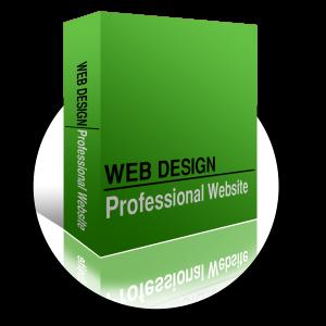 Websites and print website design - professional websites